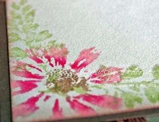 {Petal Prints & Watercolour Crayons}