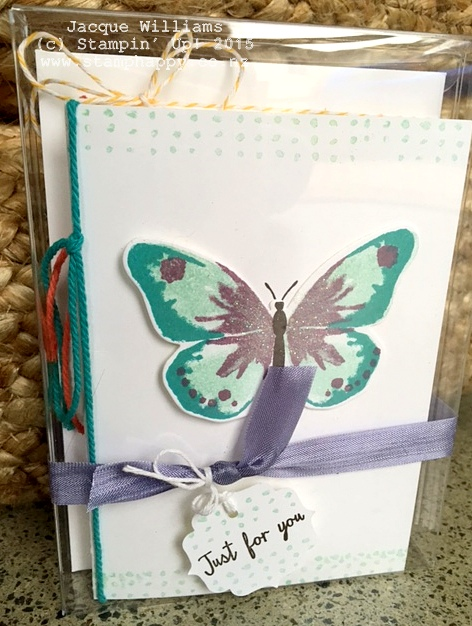 stampin up watercolour wings watercolor gift pack gift box