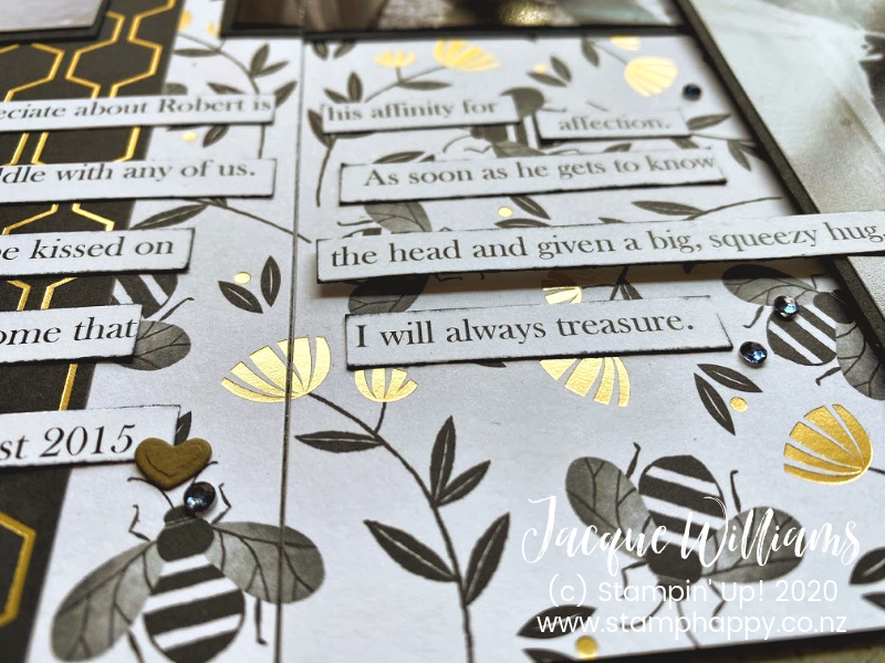 Honey Bee, stampin' Up!, scrapbooking ideas, scrapbook new zealand, double layout, masculine scrapbook pages ideas