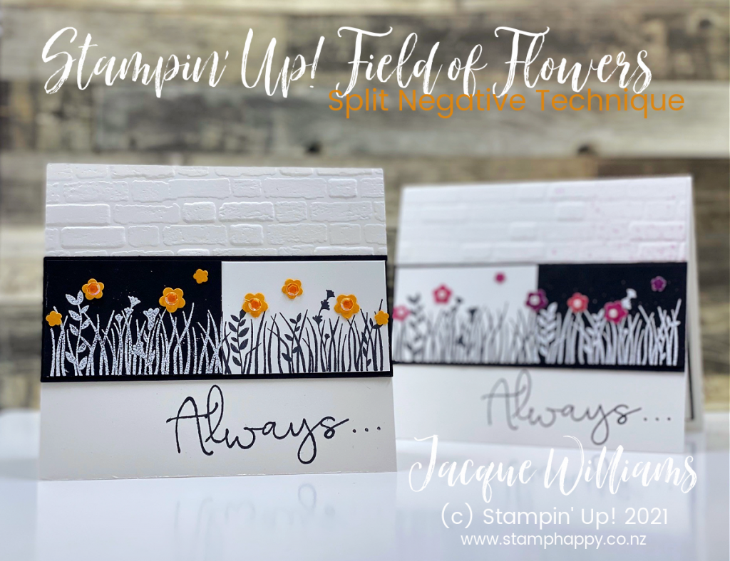 Technique Focus:  The Split Negative Technique!  Step by step instructions plus a short video demonstrating this fun, striking technique!  Stampin' Up! New Zealand craft classes