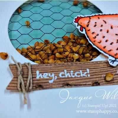 Hey Chicken! Unique Birthday Barnyard Shaker Card