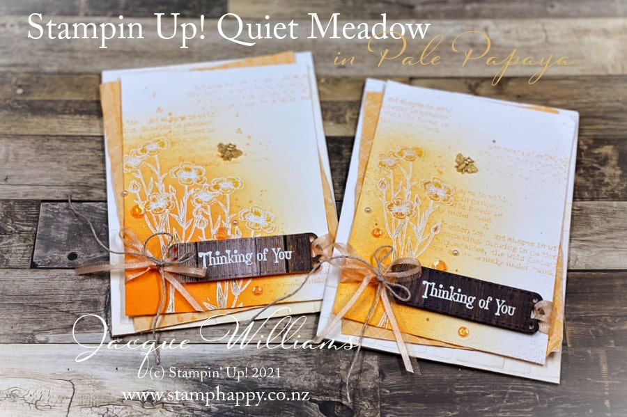 Make a pretty card with the Quiet Meadow bundle and the new Pale Papaya In Color.