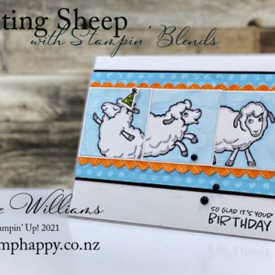 Quick Counting Sheep Masculine or Teenager Birthday Card