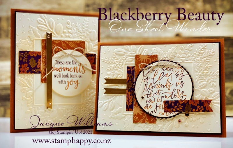 Beautiful One Sheet Wonder with the Blackberry Beauty papers and the Merriest Moments folder.   Stampin' Up! Stamp classes online and in New Zealand.